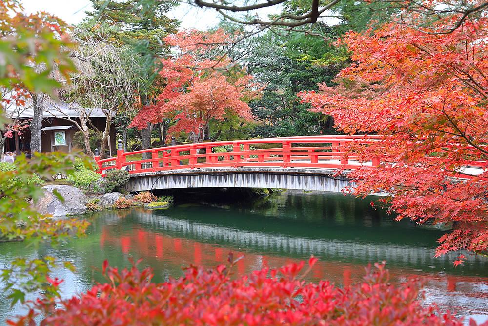【米子店】11月の着物de由志園の紅葉